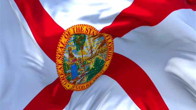 Florida Flag Waving in Wind Slow Motion Animation . 4K Realistic Fabric Texture Flag Smooth Blowing on a windy day Continuous Seamless Loop Background. Flag Waving in Wind Slow Motion Animation . 4K Realistic Fabric Texture Flag Smooth Blowing on a windy day Continuous Seamless Loop Background. florida us state stock videos & royalty-free footage