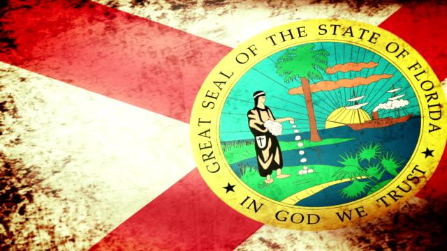 Florida State Flag Waving, grunge look Florida State Flag Waving, grunge look florida us state stock videos & royalty-free footage