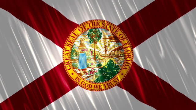 Florida State Loopable Flag A Full HD, 1920x1080 Pixels, Seamlessly Loopable Flag Animation florida us state stock videos & royalty-free footage
