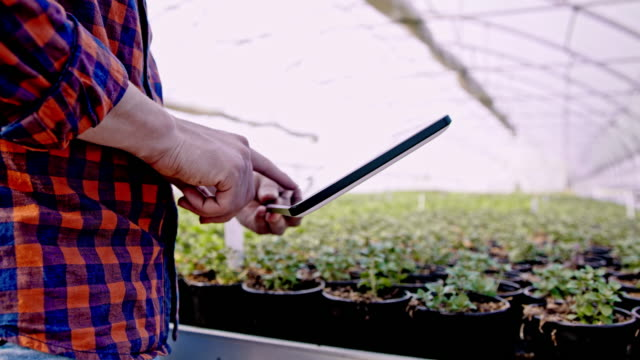 DS MS Florist analyzing flower growth in the greenhouse with a tablet video