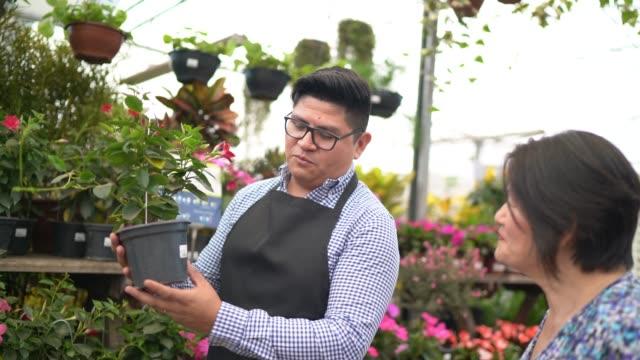 vidéos et rushes de floriste et client achetant sur le propriétaire de magasin de fleur de petite entreprise - relation client