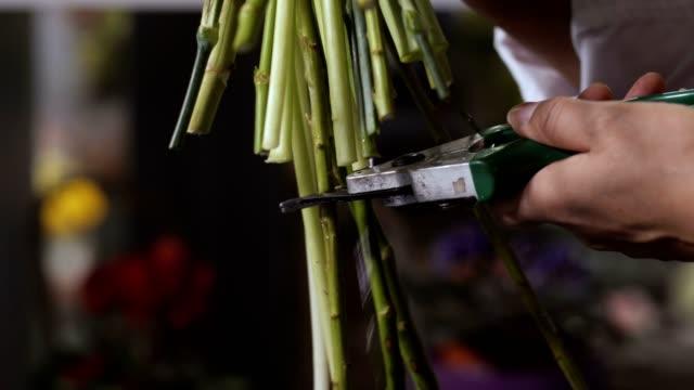 florist hand cutting flower stems in workshop - stelo video stock e b–roll