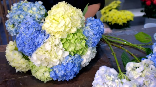 stockvideo's en b-roll-footage met de vrouw die van de bloemist groot boeket van hortensiabloemen in winkel, handenclose-up maakt. - hortensia