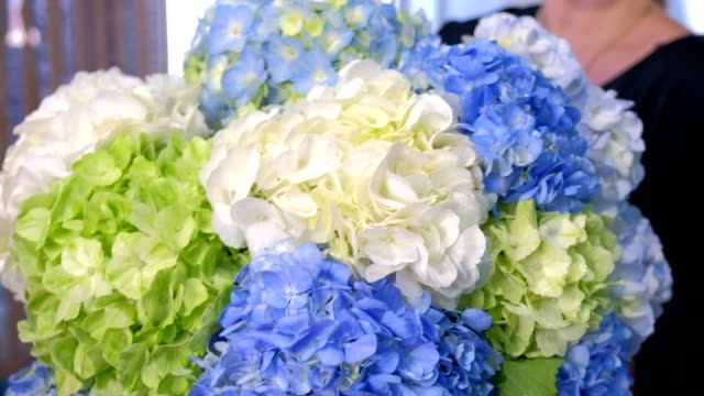 Florist woman holds shows huge bouquet of hydrangea flowers in shop for sale.
