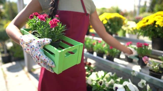 ガーデンセンターで働く花屋の女性 - 花市場点の映像素材/bロール