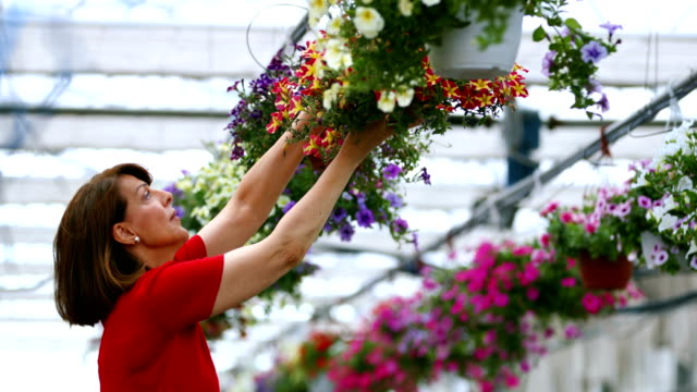Florist working at a greenhouse.
