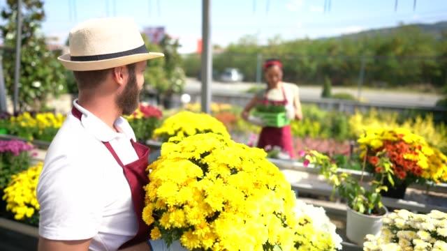 florister som arbetar i trädgårdscenter - blomstermarknad bildbanksvideor och videomaterial från bakom kulisserna
