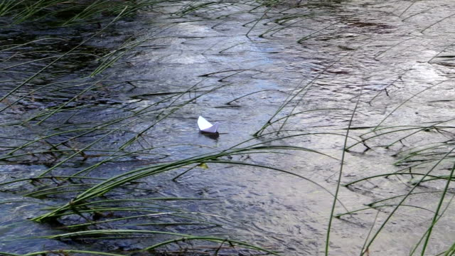 flow stream tide white paper boat over bulrush in nature video