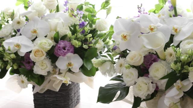 vidéos et rushes de arrangement de fleur - composition florale