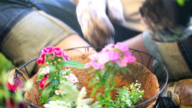 Flower in Basket and Dolly with Dirt video