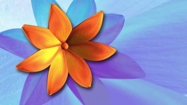 flower orange rotating plant video