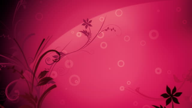 Flower Pattern Background (Dark Pink) - Loop video