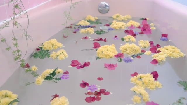 Flower Petals Fall onto the Surface of a Pink Bathtub