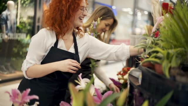 Flower Shop Two Young Women Florists In The Flower Shop saleswoman stock videos & royalty-free footage