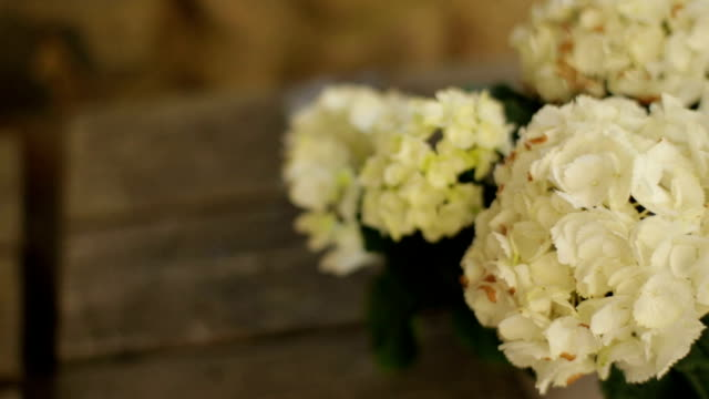 Flower vases on wooden table at home video