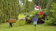istock Flower 1248275508