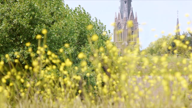 Flowers and church in Weesp, Holland video