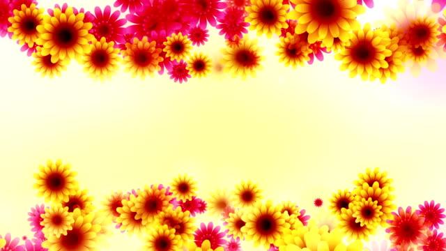 Flowers background loop video