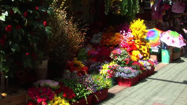 Flowers being sold in the street