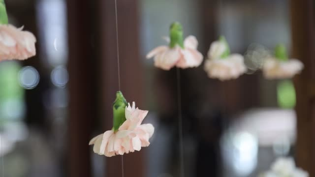 flowers buds hanging on threads as wedding decoration - триллиум стоковые видео и кадры b-roll