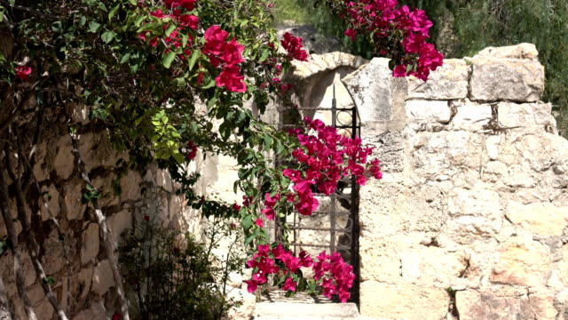 Flowers Hanging in Front of Gate in Church Courtyard