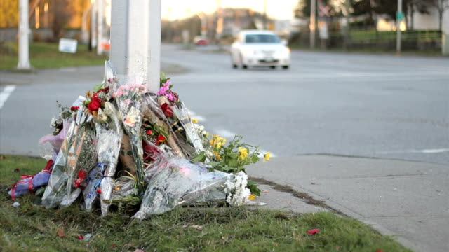 Flowers Mark Traffic Accident Death video