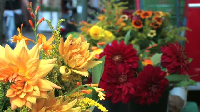 flowers on a market - blomstermarknad bildbanksvideor och videomaterial från bakom kulisserna