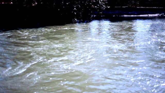 春の中に流れる川 - ハリヤナ州点の映像素材/bロール