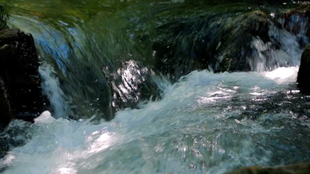flowing river stream. crimea. sound - akan su stok videoları ve detay görüntü çekimi