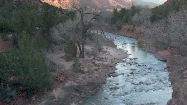 Flowing Virgin River Zion National Park at Sunset video