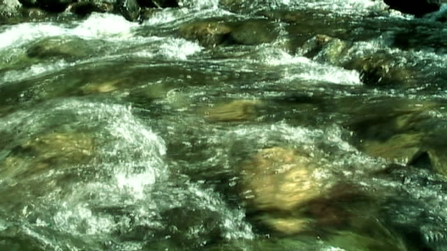 Flowing water in mountain forest (anamorphic 16:9) video