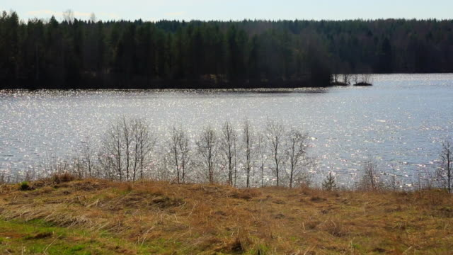 Flowing water in sunny day. Karelia, Russia video
