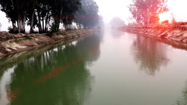 flowing water in the river during springtime - haryana video stock e b–roll