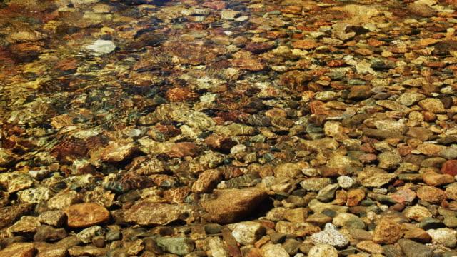 Flowing Water in the Tuolumne River video