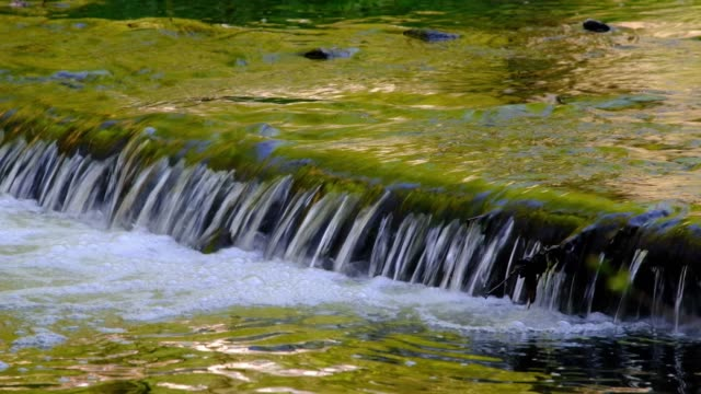 senohraby から春の zlenice 近くの ctyrkoly まで、森の小川にある堰の上に流れる水 - チェコ共和国点の映像素材/bロール