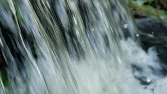 Bидео Flowing water splash on waterfall with green grass slow motion and close up macro