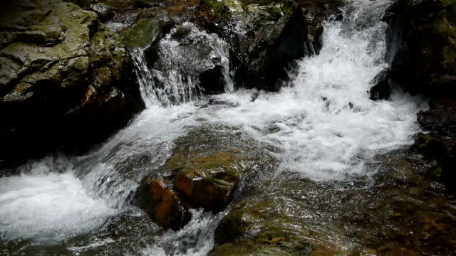 Flowing water with running water sound HD Video video