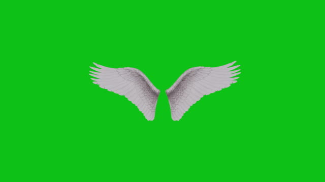 Fluffy white 3D animated angel wings flapping on a green screen background