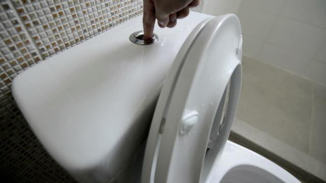 Flush The Toilet video