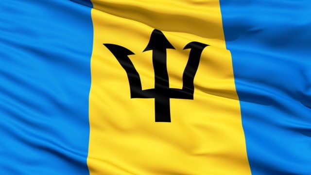 Fluttering Flag Of Barbados video