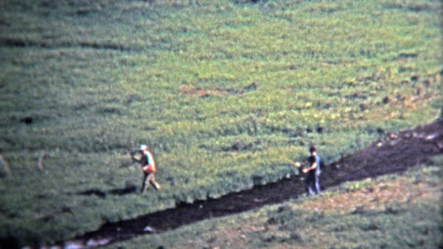 1972: Fly fishermen fishing on small alpine stream. video
