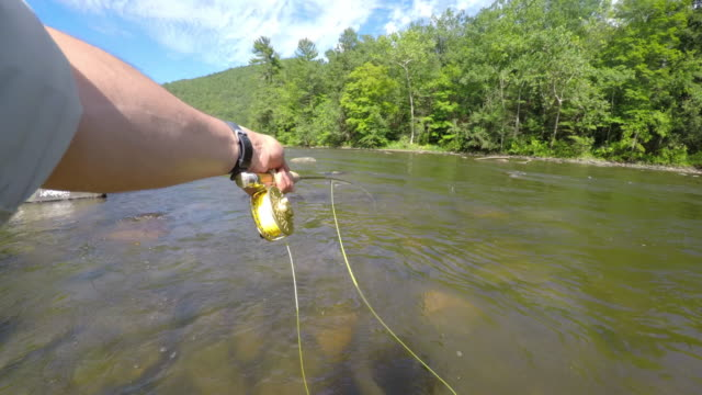 Fly Fishing in Vermont video
