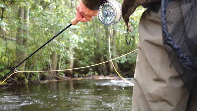 Fly fishing sunset river video