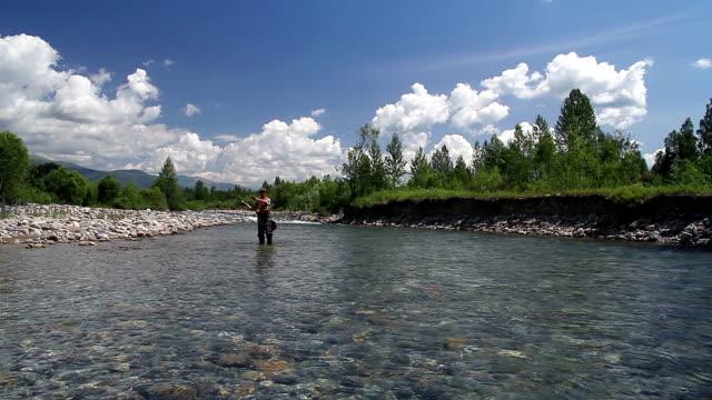 pesca con la mosca - trout video stock e b–roll