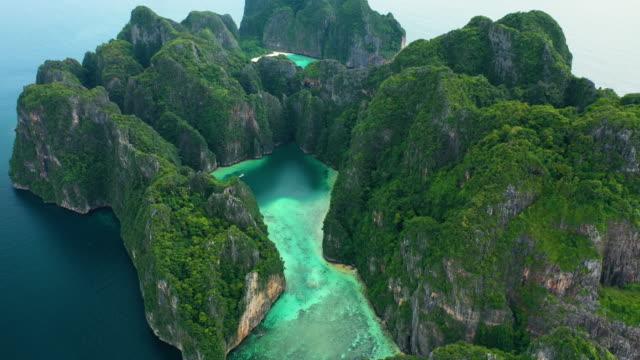 向前傾斜的皮皮勒,皮皮島,泰國。 - 熱帶樹 個影片檔及 b 捲影像