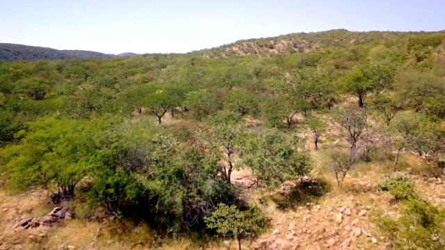 fly over northern Namibia landscape video