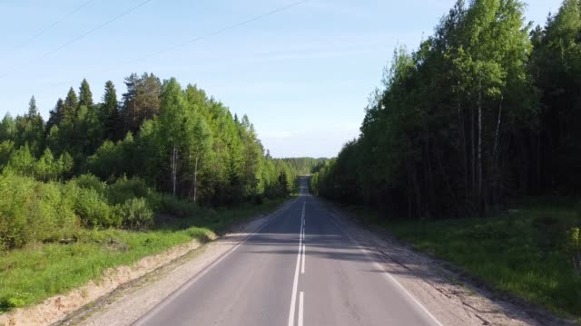 夏の日のビデオで森の間の舗装された道路の上を飛ぶ ビデオ