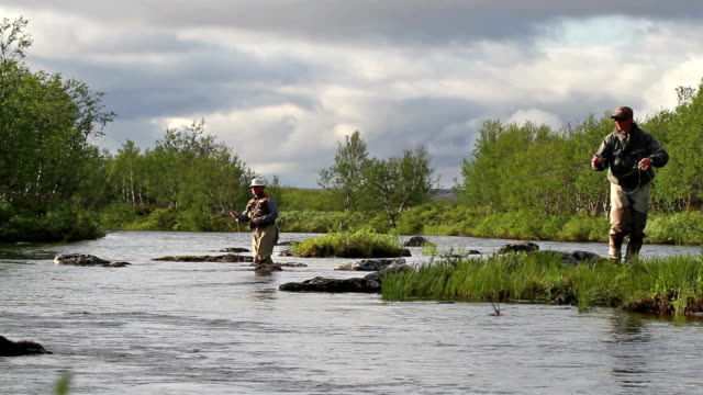 flyfishing - trout video stock e b–roll