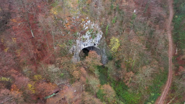 Flying above a monumental cave entrance among trees by drone