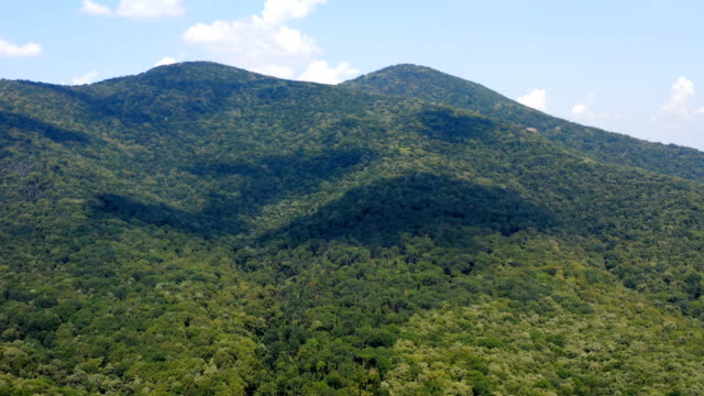 Flying above a vast mountain terrain covered by a thick forest